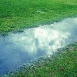 九州方面の大雨の被害にあわれた方へ(旅する家事務局より)